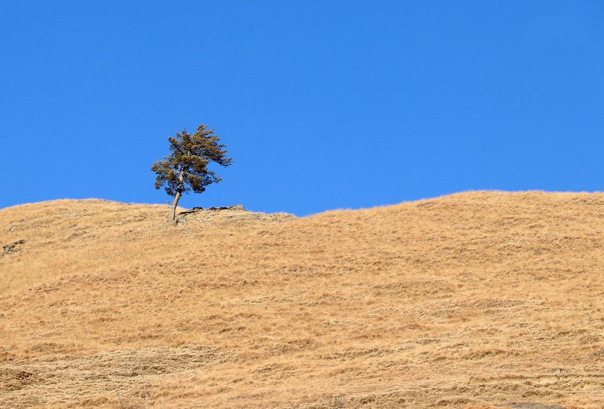 Landscape - Jumla